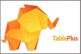 TablePlus 4.2.0 Build 172 Crack